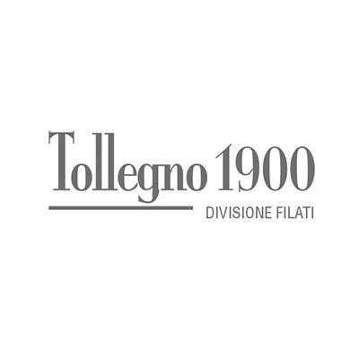 Tollegno 1900 Spa Divisione Filati