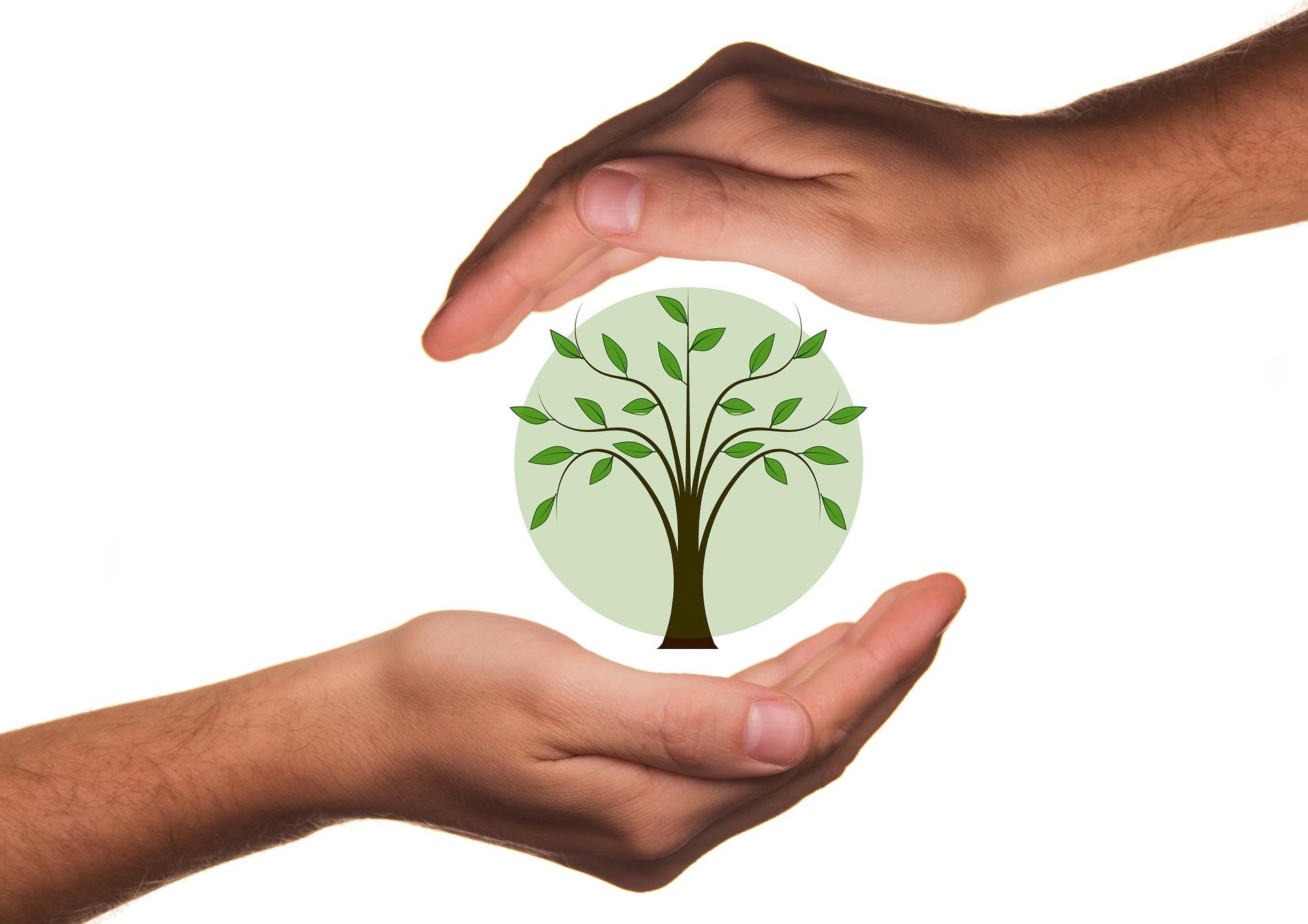 48a Edizione Di Filo: Sostenibilità In Primo Piano